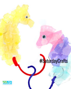 Seahorse Paper Craft #CraftDay scan by Robert Newhook